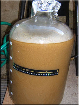 Dish Water Pale Ale